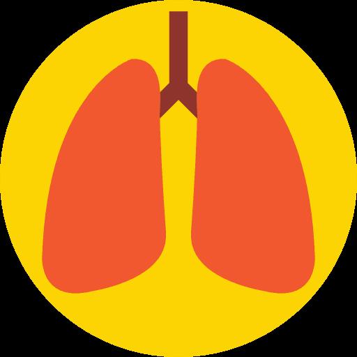 los pulmones fisiopatologia